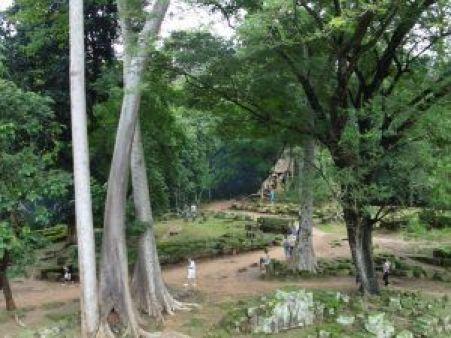 Naturaleza del Templo