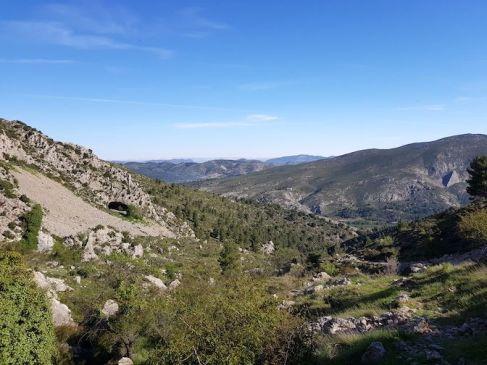 Cova Bernat