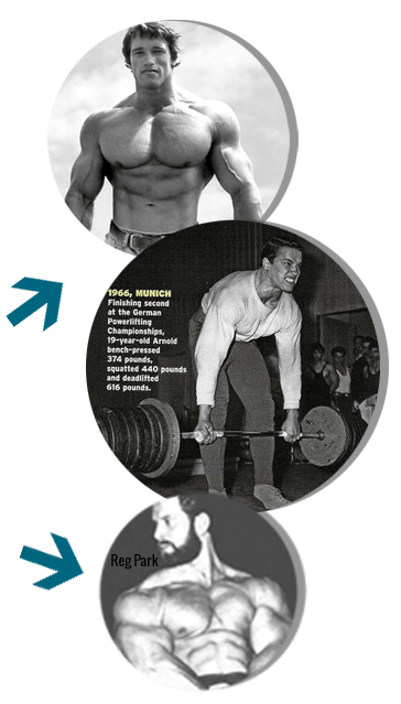 arnold - The Anabolic Aftergrowth Program