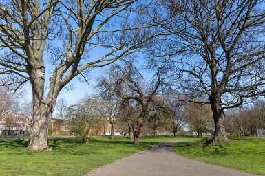 Burgess Park, London
