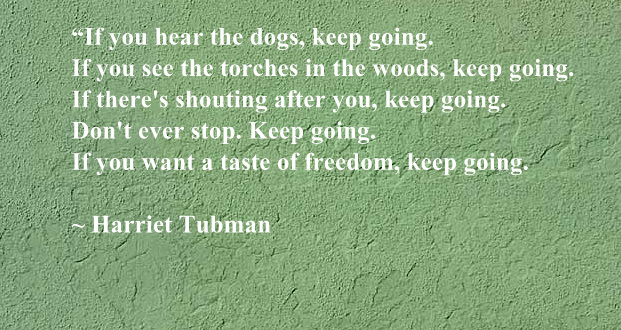 Harriet Tubman Quote Anali's Next Amendment Awesome Harriet Tubman Quotes