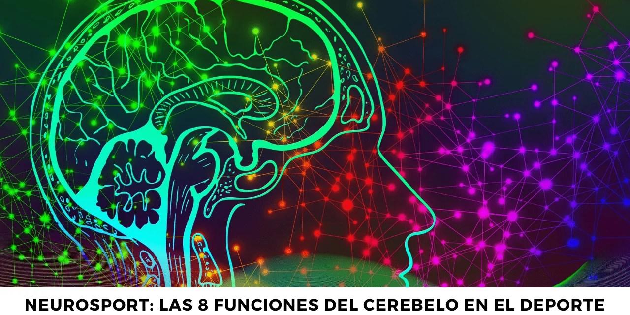 Neurosport: Las 8 funciones del cerebelo en el deporte