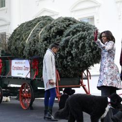 Michelle Obama junto a sus hijas Malia y Sasha y los perros Bo y Sunny, recibiendo el árbol en la Navidad 2014