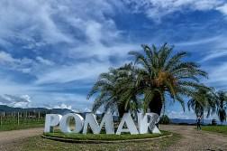Viñedos Pomar en Carora, estado Lara