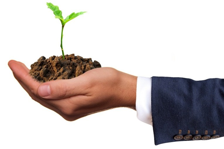 emprendimiento-sembrar-emprender-foto pixabay