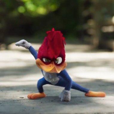 El pájaro loco
