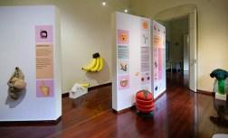 Exposición Conociendo la química de los alimentos