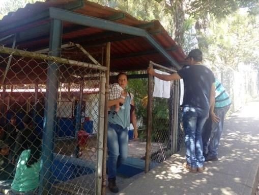tachira elecciones municipales