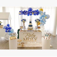baby shower moly