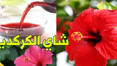 Photo of عصير الكركديه للتنحيف