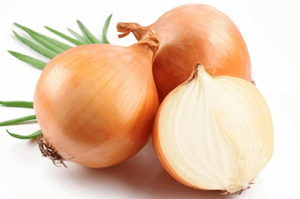 فوائد البصل لعلاج سقوط الشعر