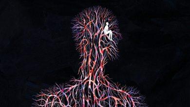 Photo of تفسير الاحلام في الأمراض والأوجاع والعاهات الجزء الثالث