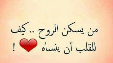Photo of حكم عن الحب والحياة