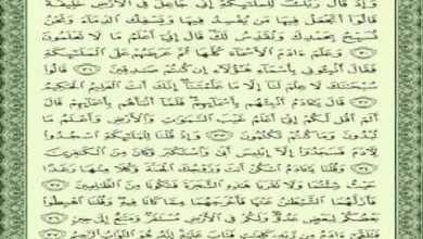 Photo of تفسير سورة البقرة من الاية 29 إلى الآية 37