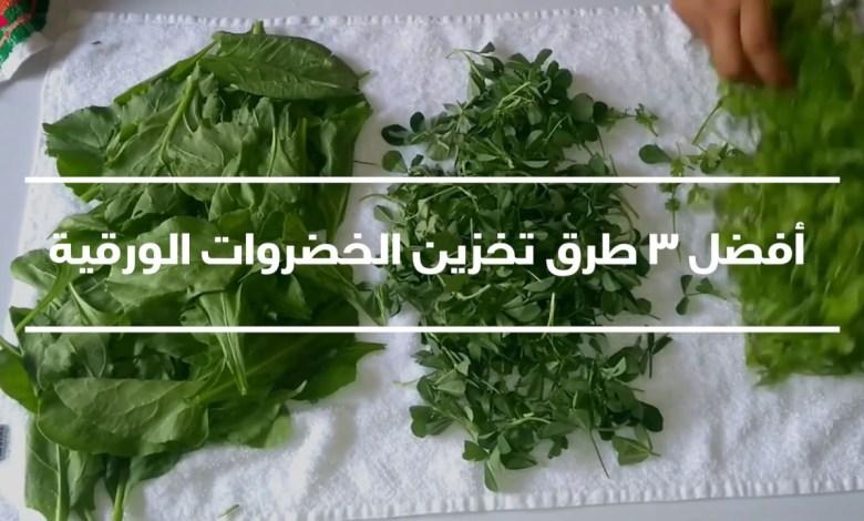 طريقة حفظ الخضروات الورقية