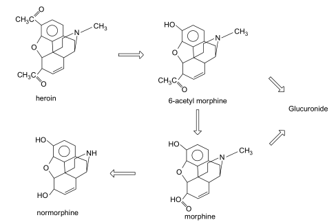 Structure de la diamorphine (héroïne) et de ses principaux métabolites.