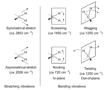 Vibrations moléculaires du groupe méthylène CH 2 (avec la permission de Pavia et al., 1996).