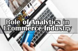 What is the role of analytics in E-Commerce industry?
