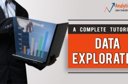 A Comprehensive Guide to Data Exploration