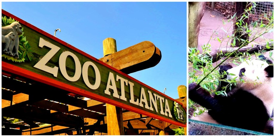 Things To Do In Atlanta, Georgia