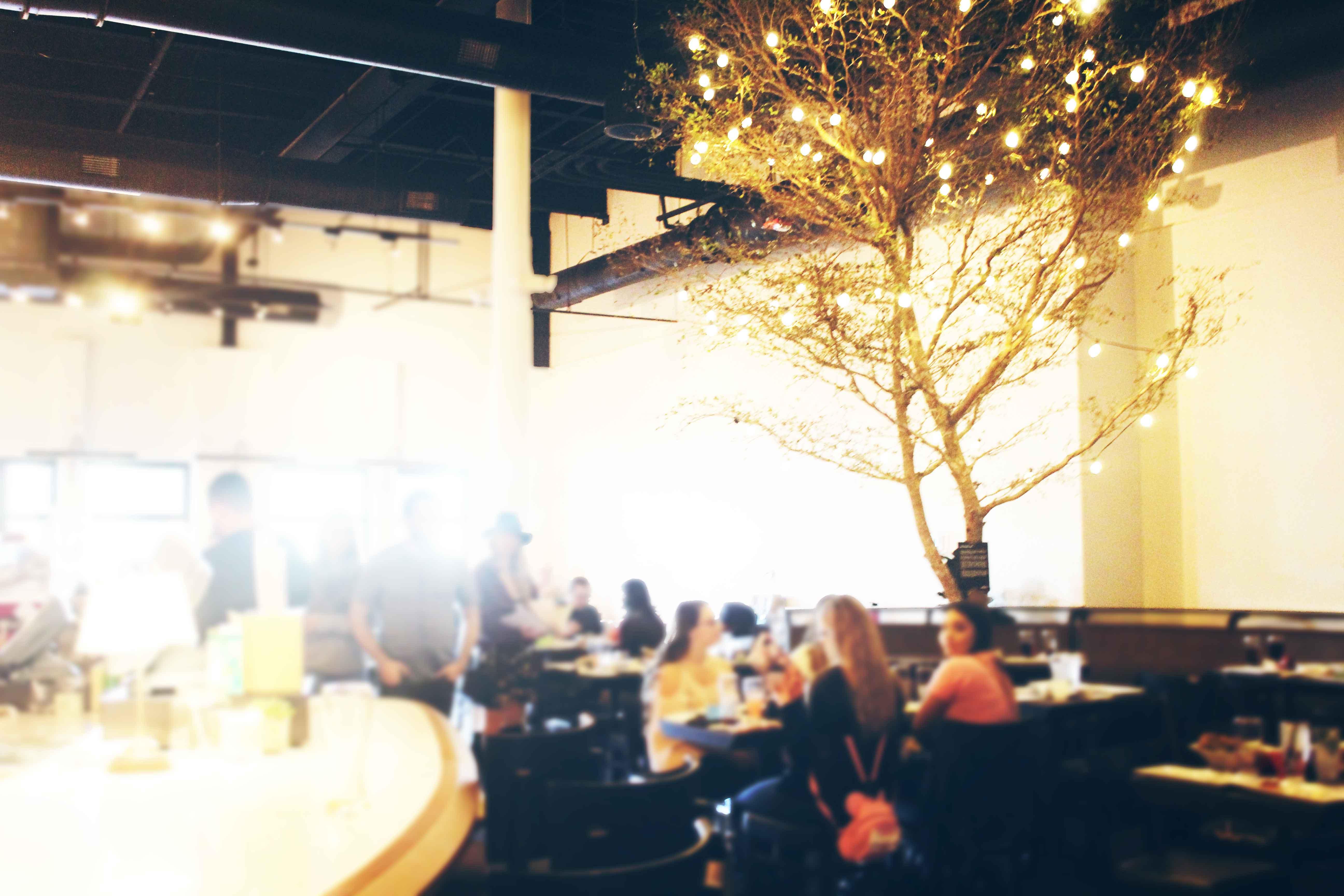 MidiCi The Neapolitan Pizza Company, St. Pete, FL | Review