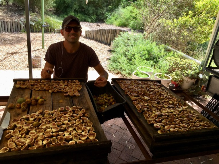 After picking, we had to prepare the figs for drying