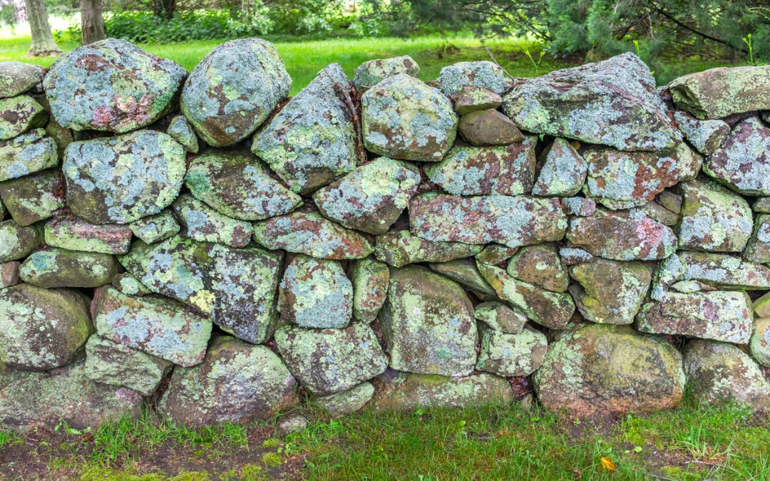 Is Stonewalling Abuse? Seeing the Damage and Learning to Stop