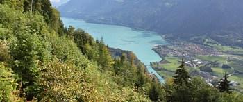 Lago Thun (fonte)