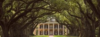 Uma foto da Oak (fonte: site oficial)