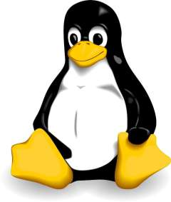 Watch Out For Sneaky Linux/Cdorked.A