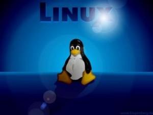 linux web hosting