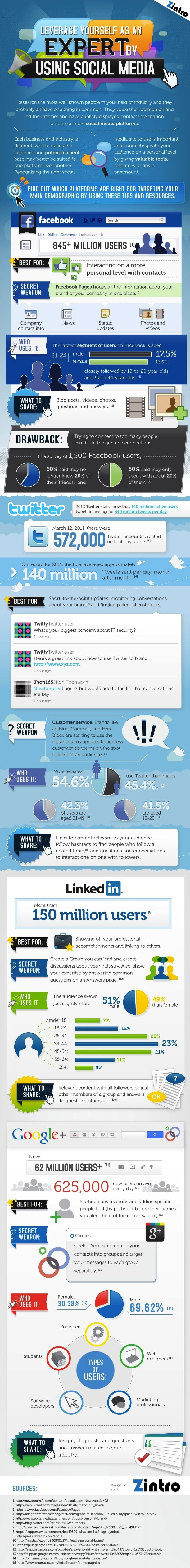 How to Leverage your Social Media Presence as an Expert? [INFOGRAPHIC]