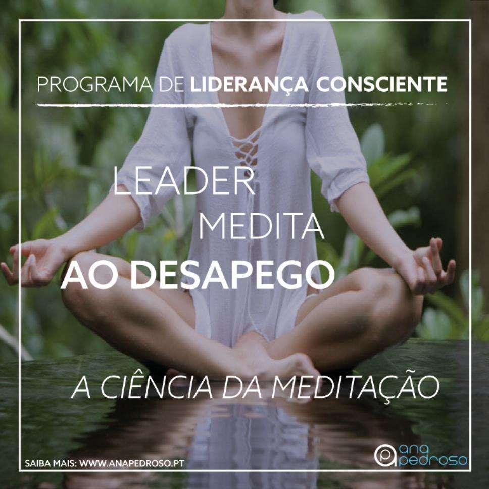 Leader Medita - Curso Ana Pedroso dia 10 -2