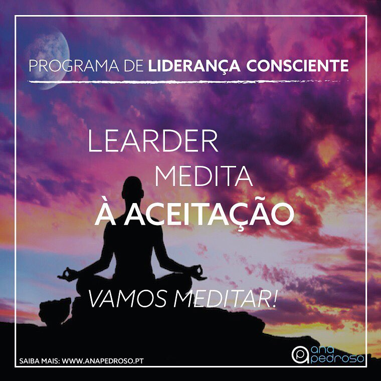 Leader Medita - Curso Ana Pedroso dia 3 -3