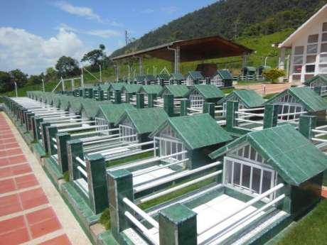 Cementerio de los Andes, Caquetá (Fotografía de José Antonio Gutiérrez D.)
