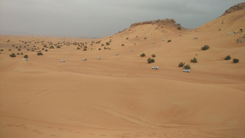 Dubai Holiday Smart Itinerary - Desert Safari