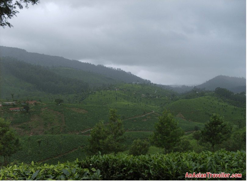 Valparai Tea Estate Top Slip Tamil Nadu
