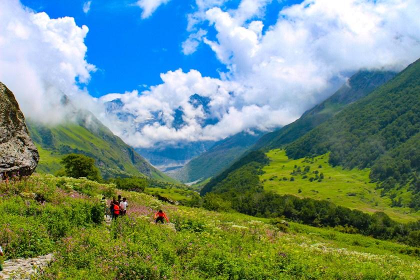 valley of flowers trek himalayas