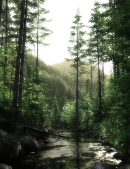 Schwarzwaldähnliche Landschaft, ursprünglich kreiiert von Howie Farkes und gerendert mit Carrara 8.1.