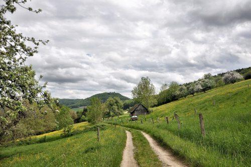 Blühender Klettgau: An Christi Himmelfahrt 2013 grünt und blüht es überall - wie beispielsweise hier der Weg von Lauchringen Richtung Küssaburg. (Foto: Martin Dühning)
