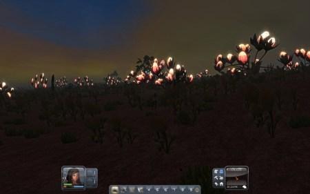 Nachts leuchtet die Flora - z. B. auch hier in der roten Wüste. Zombies verunstalten auf dem Alienplaneten zum Glück NICHT die Landschaft, dafür gibt es nachts aber gefährliche spinnenartige Käfertiere.