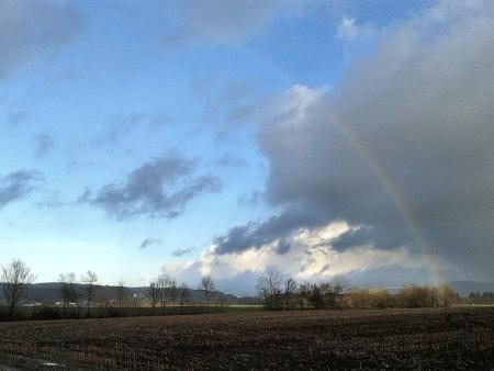 Ein Regenbogen im irischen Schauerwetter des 11. Januar 2015 (Foto: Martin Dühning)