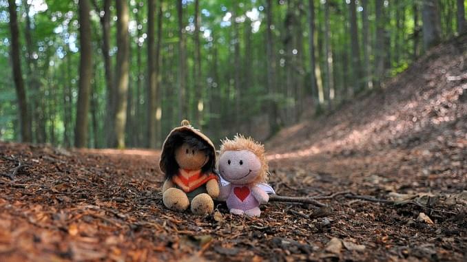 Verschnaufpause im Wald (Foto: Martin Dühning)