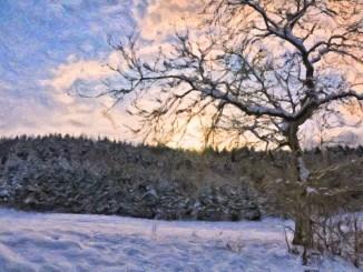 Winterpastell (Grafik: Martin Dühning)