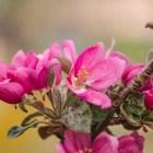Neue Frühlingsansichten