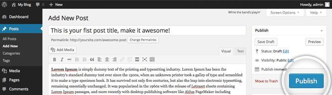 Publishing a post on WordPress 3