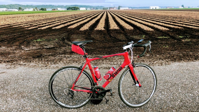 My roadbike is placed with the onion fields of Holland Landing in the background.