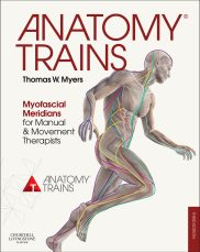 Image result for myers anatomy trains