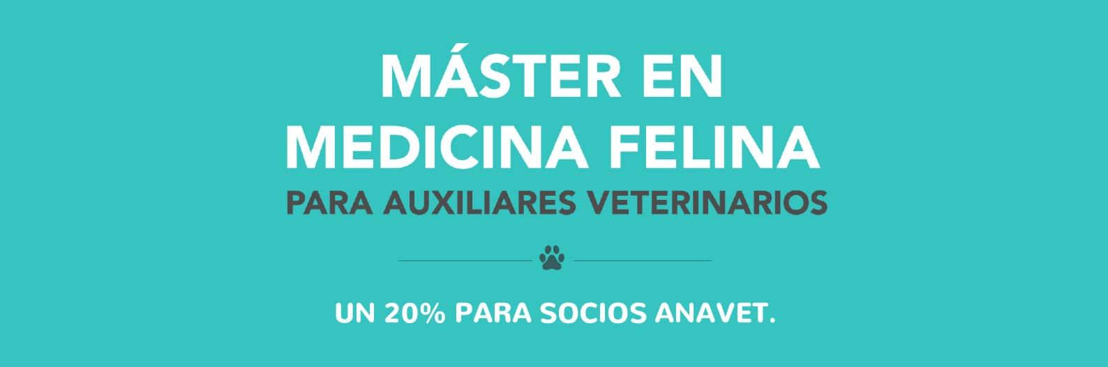 Máster en Medicina Felina para auxiliares