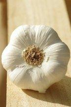garlic-3184971__480-1987015933.jpg